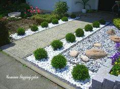 Front garden design with boxwood - Garden Design Ideas Stone Landscaping, Front Yard Landscaping, Landscaping Plants, Landscaping Ideas, Backyard Ideas, Front Gardens, Outdoor Gardens, Front Garden Landscape, Garden Stones