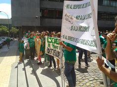 Justicia y Paz Tenerife: Escuela pública de todos y para todos