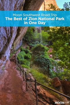 The Best of Zion National Park in One Day