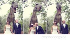 What a fun idea! Taking your #wedding photos at the #CalgaryZoo! #WeddingIdeas.