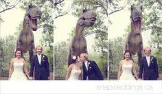 What a fun idea! Taking your #wedding photos at the #CalgaryZoo! #WeddingIdeas.