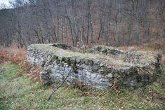 05 Ruine Manastirea Cosustea Crivelnic © 2010 Elvis Dobrescu – Elvisdobrescu's Weblog Funeral, Solar, Plants, Ruins, Plant, Planets