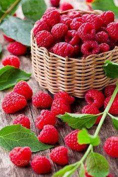 Raspberries by M. Pessaris on - Obst Fotografie Fruit And Veg, Fruits And Vegetables, Fresh Fruit, Fruits Photos, Fruit Photography, Beautiful Fruits, Delicious Fruit, Fruit Garden, Healthy Fruits