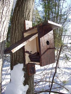 The snake is a heart attack waiting to happen, but I love the bird house idea for a geocache!  Found on:  awesomegeocaching.com