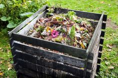 How to Start Composting For Beginners | Composting for Beginners, Composting Tips for Beginners, Composting for Beginners DIY, Composting for Beginners How to Make, Gardening, Garden Ideas, Gardening for Beginners, Garden, Vegetable Garden