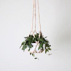 Una forma muy original de crear un colgador para plantas con bolitas de madera. Perfecto para mantenerlas lejos de los gatos.