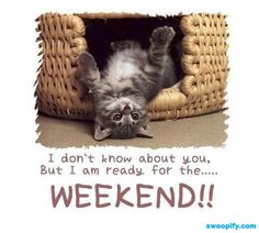 I Am Ready For Weekend #humor #lol #funny