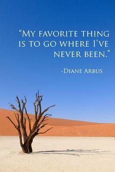 Namibia Deadvlei Camel Thorn Tree
