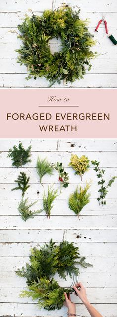 Foraged Evergreen Christmas Wreath