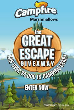 The Great Escape, The Great Outdoors, Campfire Marshmallows, Indoor Camping, Campfires, Have Some Fun, Camping Gear, Blackberries, Cooking