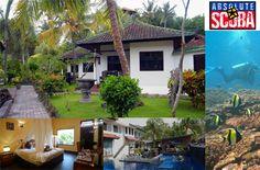 Absolute Scuba Bali Dive Resort, Hotel in Bali Bali, Dive Resort, Diving, Outdoor Decor, Home Decor, Indonesia, Travel Destinations, Viajes, Decoration Home