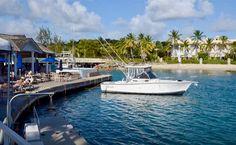 Barbados fishing trips aboard Betsy B FIshing Charters - go fishing for four, five or six hours excursions. Fishing Trips, Going Fishing, Fishing Boats, Deck Canopy, Fishing Tournaments, Bridgetown, Fishing Adventure, Fishing Charters, Barbados