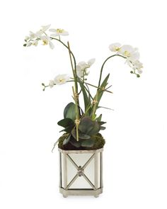 """34""""H X 19""""W X 16""""D Silver Orchids. Silver & mirror container with white phalaenopsis orchids growing inside a bamboo trellis with foliage"""