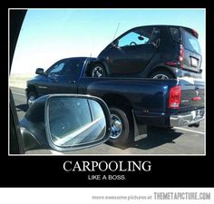 OMG, I am SO buying one of these to put in the back of my truck now that I know it'll fit!