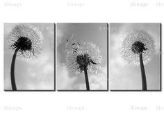 Foto su tela di 3 soffioni, denti di leone. Stampa su 3 tele. bimago.it // 3 dandelions, blacn and white photography canvas art
