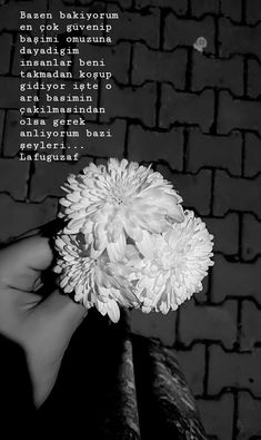 Silhouette Photography, Quote Aesthetic, Photography Photos, Cool Words, Engagement Photos, Einstein, Snapchat, Quotations, Love Quotes