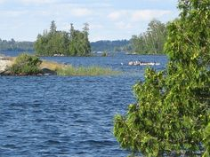 Lake Vermilion Minnesota | ... deal on Lake Vermilion state park | Minnesota Public Radio News