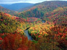 Upstate New York As you can see...beautiful in the fall!