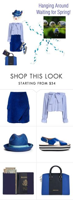 """The Blues"" by petalp ❤ liked on Polyvore featuring Derek Lam, Sensi Studio, Flamingos, Royce Leather, Armani Jeans, The Row, women's clothing, women, female and woman"
