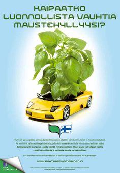 Puhtaasti kotimainen - Kaipaatko luonnollista vauhtia maustehyllyysi? 2012 Avon, Wallet, Purses, Diy Wallet, Purse