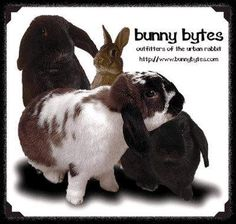 Bunny Bytes: Outfitters of the Urban Rabbit  The best site for small animal supplies (mainly chews/toys), mostly for rabbits and guinea pigs/ smaller hamster type animals that need chew toys, but also has some neat houses and stuff for ferrets or other non rodents.