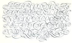 Jan Van de Velde calligraphy - Buscar con Google