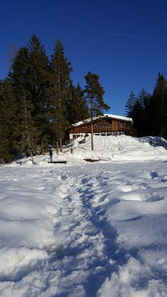 Winter in Mösern - Möserer See Alps, Austria, Winter, Outdoor, The Great Outdoors, Outdoors