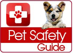 Click for Pet Safety Guide.