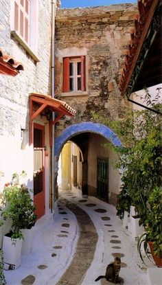 Olymbi Village, Chios Island (Dodecanese), Greece // by bogdanovskaya on Frickr