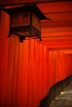 https://flic.kr/p/8CBCK5 | lantern in vermilion | fushimi-inari, kyoto