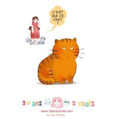 jouet chat devinette