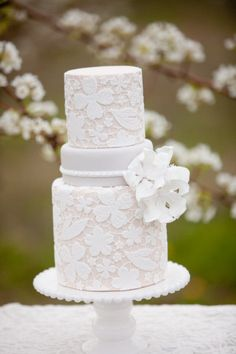 Absolutely breathtaking lace cake