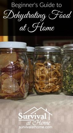 Beginner's Guide to Dehydrating Food at Home