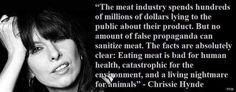 reason to go Chrissie Hynde, News Memes, Vegan Quotes, Why Vegan, Vegan News, Millions Of Dollars, Celebration Quotes, Faith In Humanity, Vegan Life