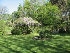 Gazebo  delle terme di Stigliano. #green #flowers #nature #land