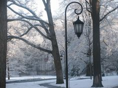 """""""Winter at Wellesley College"""" by Megan Turchi"""