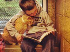 Kinderen lezen voor aan katten | WTF.nl - Blijf je verbazen