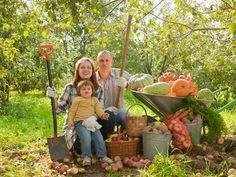 Més associacions Plants, Google, Homesteads, Gardens, Dashboards, Vegetables Garden, Natural Farming, Organic Living, Farmer