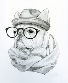 Hipster French Bulldog Drawing.
