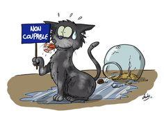 Le journal intime de Siri : les folles aventures illustrées d'un chat qui parle - Loisirs - Wamiz