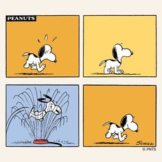 Snoopy - when you're hot, cool down with the nearest sprinkler.