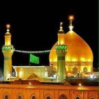 RT @ALI__qw56: قال الامام علي الرضا (عليه السلام): أن الصمت باب من أبواب الحكمة يكسب المحبة انه دليل على كل خير