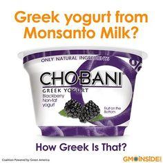 """Ask Chobani To Feed Their Cows non-gmo feed! Chobani Facebook page: http://www.facebook.com/Chobani"""