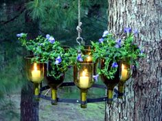 Use empty wine bottles in the garden again - 20 clever ideas