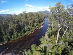 I think #Tasmania might be the most beautiful place I have ever seen. www.parkmyvan.com.au #ParkMyVan #Australia #Travel #RoadTrip #Backpacking #VanHire #CaravanHire