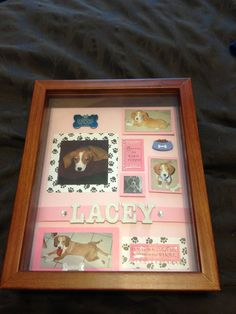 Shadow box ideas like military shadow box ideas, diy shadow box ideas, shadow box frame ideas, newbron shadow box, and etc Pet Memorial Frames, Cat Memorial, Memorial Ideas, Dog Shadow Box, Pet Memorial Jewelry, Easy Pets, Pet Remembrance, Animal Room, Pet Loss