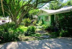 Come tour this beautiful Atlanta-inspired garden in Phoenix. Through soil-building and a big imagination, this gardener created an oasis on a budget. Fig Leaf Tea, Make Mozzarella Cheese, Arizona Gardening, Fig Leaves, Homemade Cheese, Fig Tree, How To Make Cheese, Permaculture, Atlanta