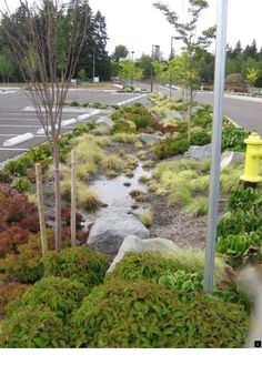 Mosaic Land Design: The challenge of storm water management: Landscape architecture offers solutions Garden Landscape Design, Urban Landscape, Landscape Architecture, Garden Landscaping, Landscaping Design, Architecture Design, Water From Air, Lawn Sprinklers, Green Street