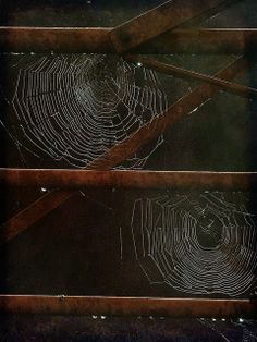 Spiders' webs