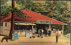 R. H. Thompson Souvenir Stand Watkins Glen New York